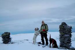 Omnfjellvarden (847 moh.) er den høyeste fjelltoppen i Orkdal. Toppunktet er markert med flere mindre varder. -  Foto: Solveig Føreland