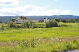 Gården Bergan ligger åpent og sørvendt til ved Soneren.  - Foto: Hilde Roland