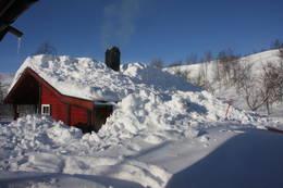 Snøvinter - Foto: Åshild Bjørnådal