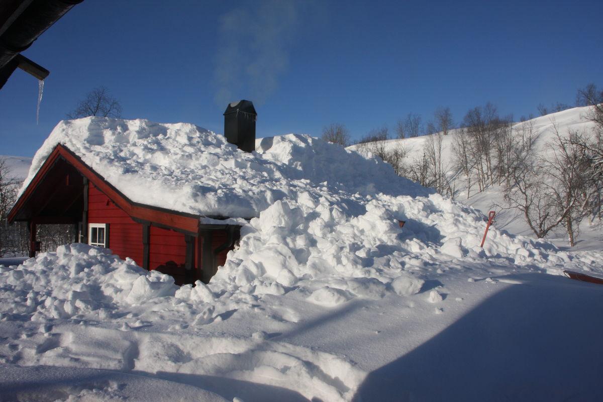Snøvinter