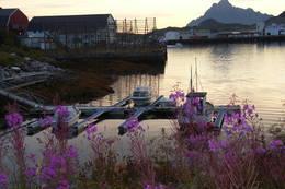 Svolvær utsikt mot Vågakallen  -  Foto: Marianne Rønning
