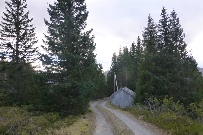 Første stykke av postvegen når ein er komt over på Breimsida går på grusveg.