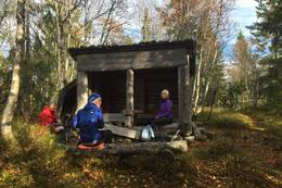 Gapahuk nær Storholtet - Foto: Margrete Ruud Skjeseth