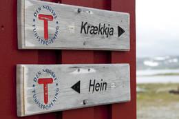 God merking av løypetraseer  - Foto: Frode Drønen