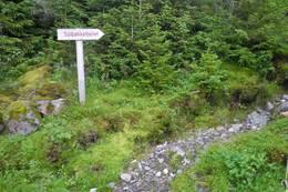 Når du har gått ned jordet, finner du dette skiltet. Her starter stien. -  Foto: Jens Leirvåg