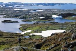 Området rundt Vassdalstjørn er grønt og frodig i motsetning til de golde områdene omkring - Foto: Stavanger Turistforening