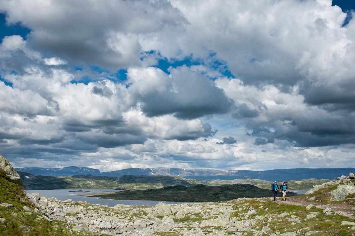 Vakkert landskap på Hardangervidda
