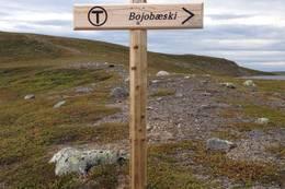 På vei til Bojobæski, 2015 - Foto: Katrine Fugelli Simonsen