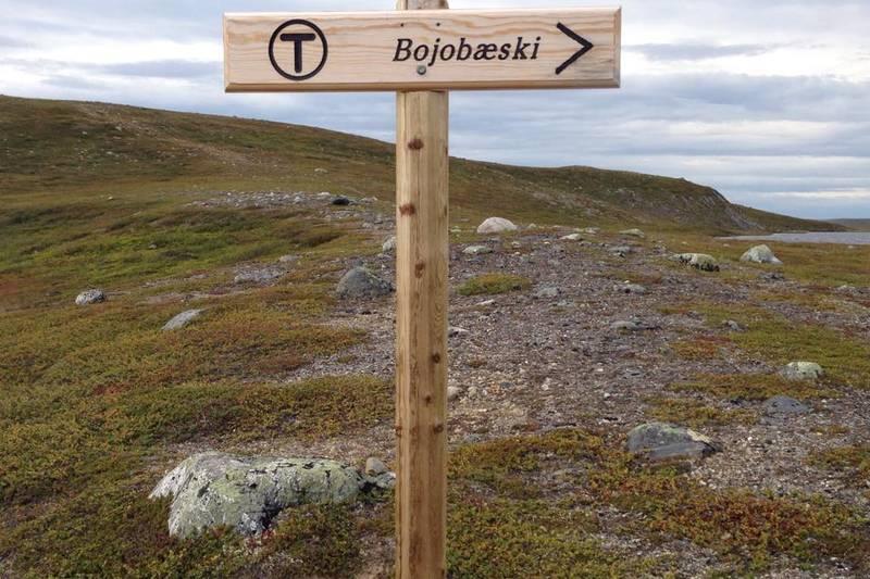 På vei til Bojobæski, 2015