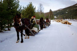 Med hest og slede til Savalen  HL - Foto: Ukjent