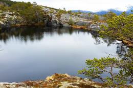 Tjønna på toppen - Foto: Kjell Fredriksen