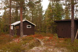 Juskjølkoia - Foto: Per Roger Lauritzen