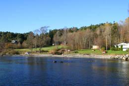 Sandvika - Foto: Helge Oland