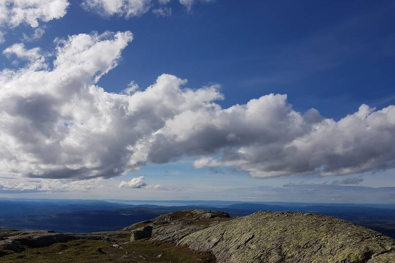 Man ser langt fra toppen. Utsikt mot Trondheimsfjorden, Skatvalslandet, Frosta og Tautra.