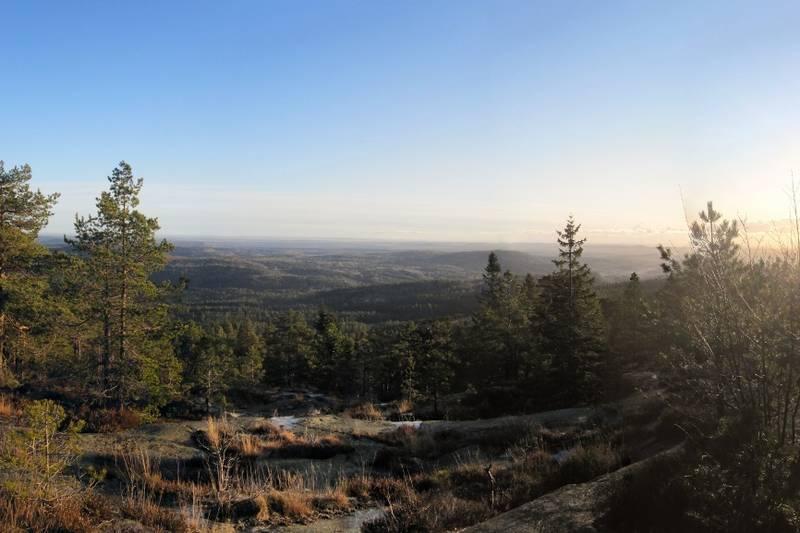 Utsikt mot øst fra toppen, vår.