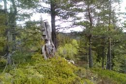 Totempel langt ute i skogen. - Foto: Moe