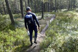 Deilig skogbunn i Drammensmarka - Foto: Torgeir Strandhagen