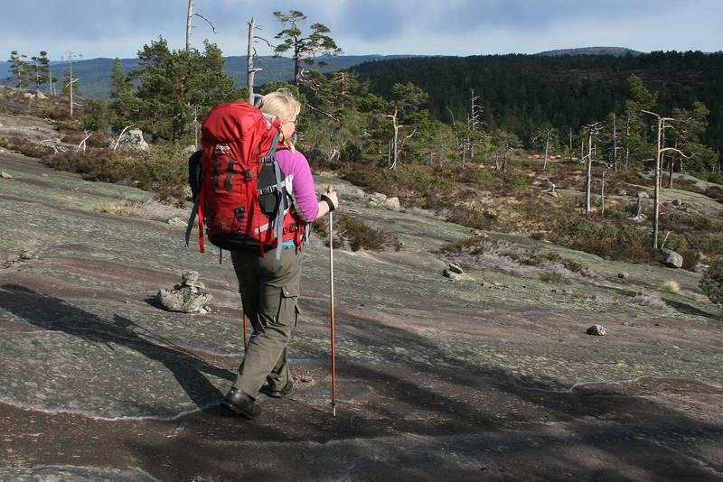 Under trollskog over Granslåttfjellet. Frå turløypa Gautefall - Sandtjønn.(Foto Ole Jakob Bråten)