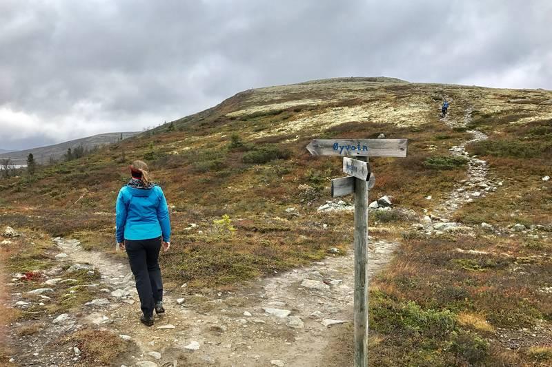Ved foten av Åkrefjell, ta til venstre mot Øyvatn