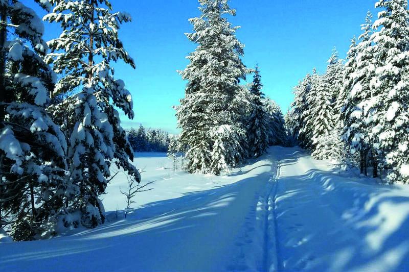 På ski fra Meheia