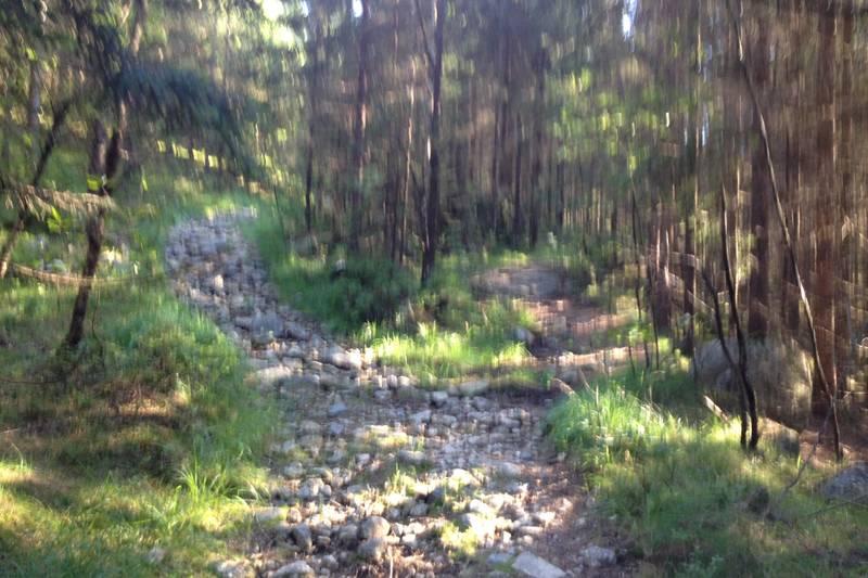 Ta første sti til høyre mot Grunnevann