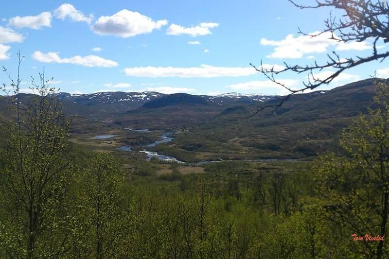 Nord i Veigdalen fra Sutarbrekko, med utsikt til Vivelid Fjellstova på vestsiden av elva