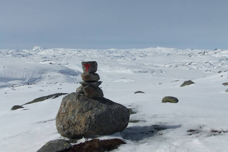 Avblåst i høyden får fram sommerløypa. her med utsikt mot Napen til venstre og Såta til høyre på ruten mellom Hovatn og Vassdalstjørn.