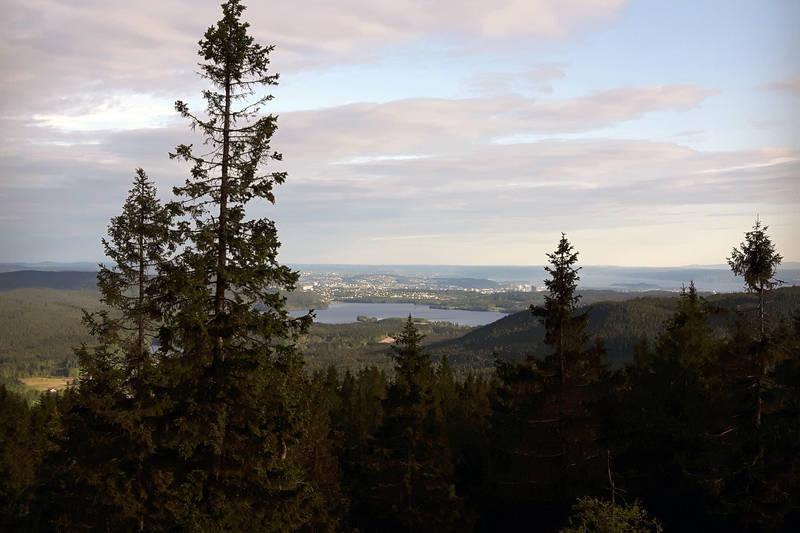 Fin utsikt fra toppen av Mellomkollen