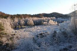En vinterdag ved Stokkaleitet -  Foto: Rita Mathisen