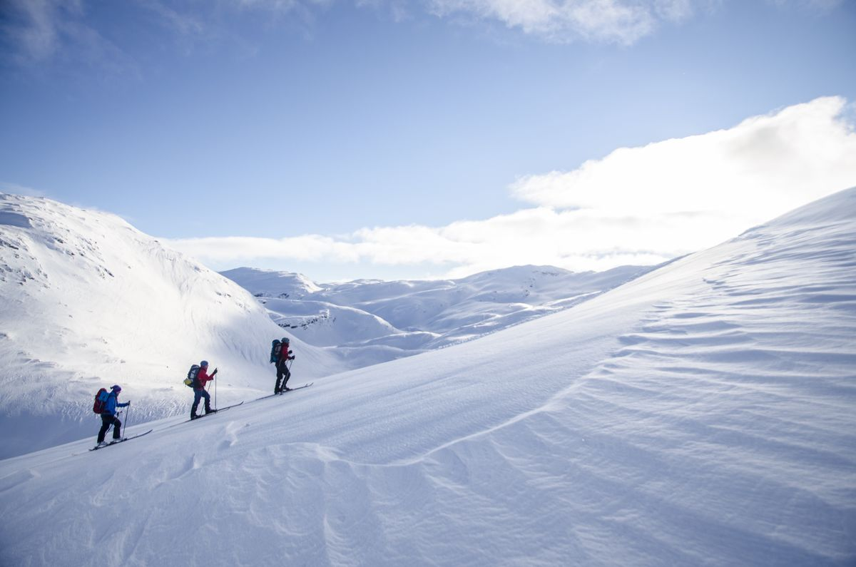 På vei mot Sveindalsnuten.