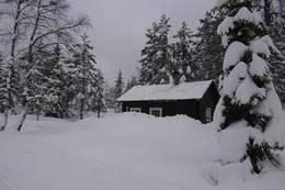 Snørik vinter på Bekkestua - Foto: Jan Ove Nicolaisen