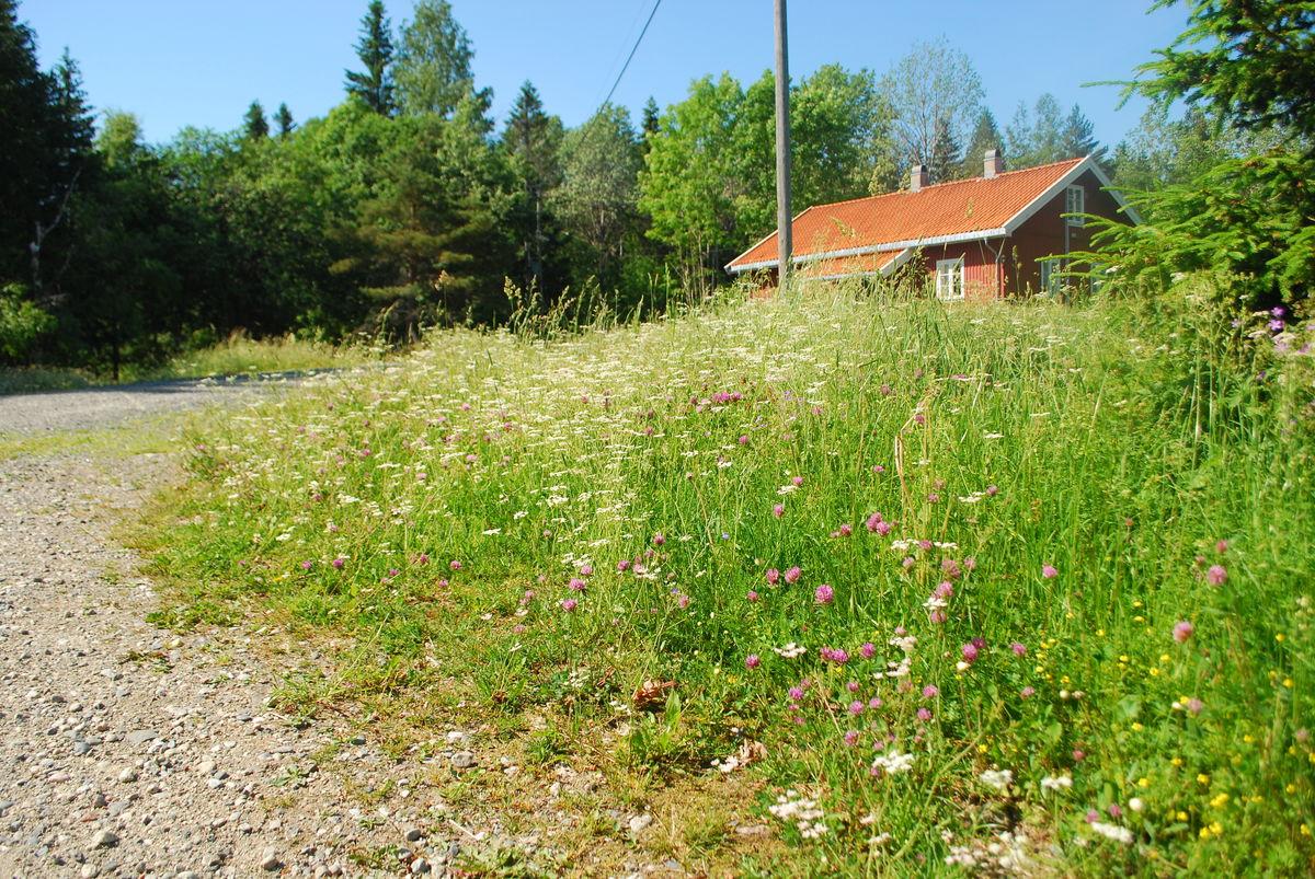 Nedre Gupu i Vestmarka disponeres av Bærum Turlag.