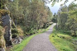 Turvei mellom Hellefjellet og Øyjordsåsen -  Foto: Kari Ingvaldsen
