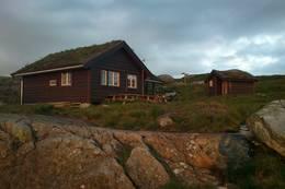 Nipebu i Askvoll Kommune, Juli 2012 [eslettehaug@yahoo.no, 90532790] - Foto: Else Slettehaug