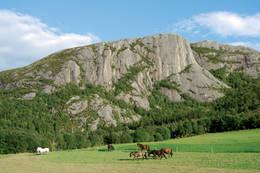 Selnesklippen ruver i landskapet. - Foto: Asgeir Våg