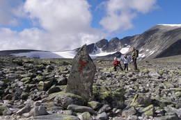 Dovrefjell - Foto: Thorbjørn Machholm