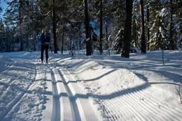 Skispor -  Foto: Sindre Thoresen Lønnes