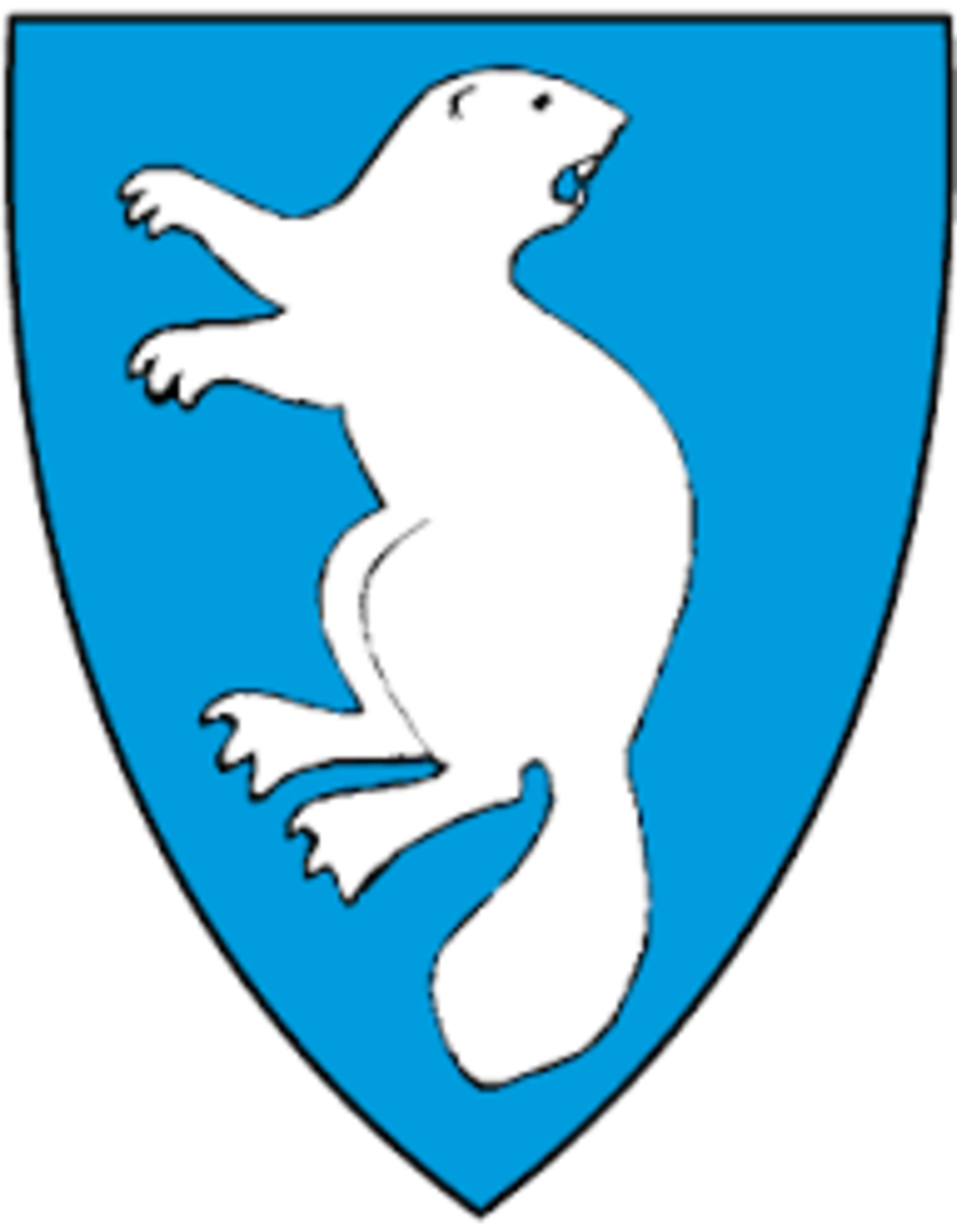 Profilbilde for Åmli turistforum