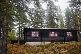 Buvasskoia -  Foto: Marius Nergård Pettersen
