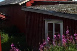 - Foto: Kathrine Kragøe Skjelvan