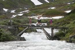 Mange broer å krysse -  Foto: Kjersti Vik