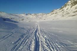 Lett gått ski terreng her utsikt inn mot Kringlekvævtjødne 785 moh - Foto: Per Henriksen