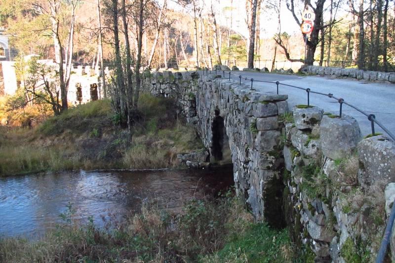 Vestlandske hovedveg fra Bakke Bru til Tronåsen