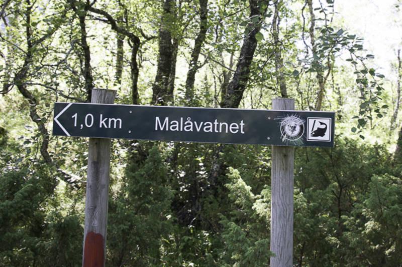 Skilt viser vei til Malåvatnet