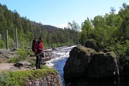 Hengebrua ved Nedrefoss - Foto: Odd Rudberg