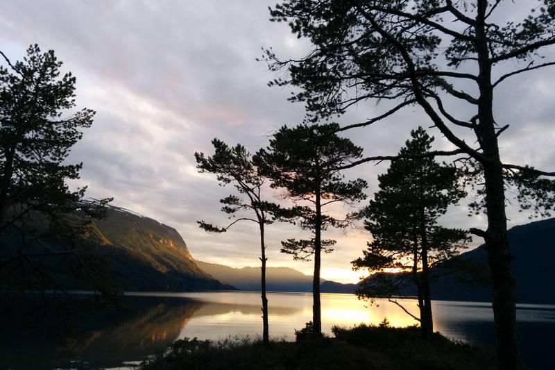 Utsikt over Hornidalsvatnet fra Skjerneset