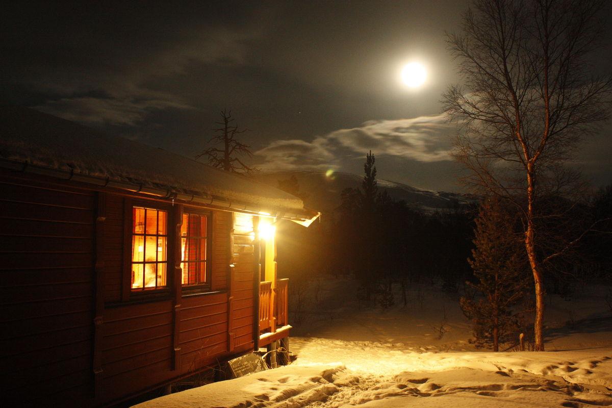 Fullmåne en vinternatt