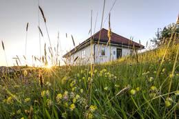 Gammeløya  - Foto: Per Thomas Skånes