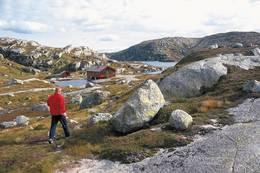 Børsteinen ligger i et typisk høyfjellsterreng. Det er bare en halv times fottur fra Lysevegen. Hytta egner seg derfor godt for småbarnsfamilier og eldre - Foto: Stavanger Turistforening