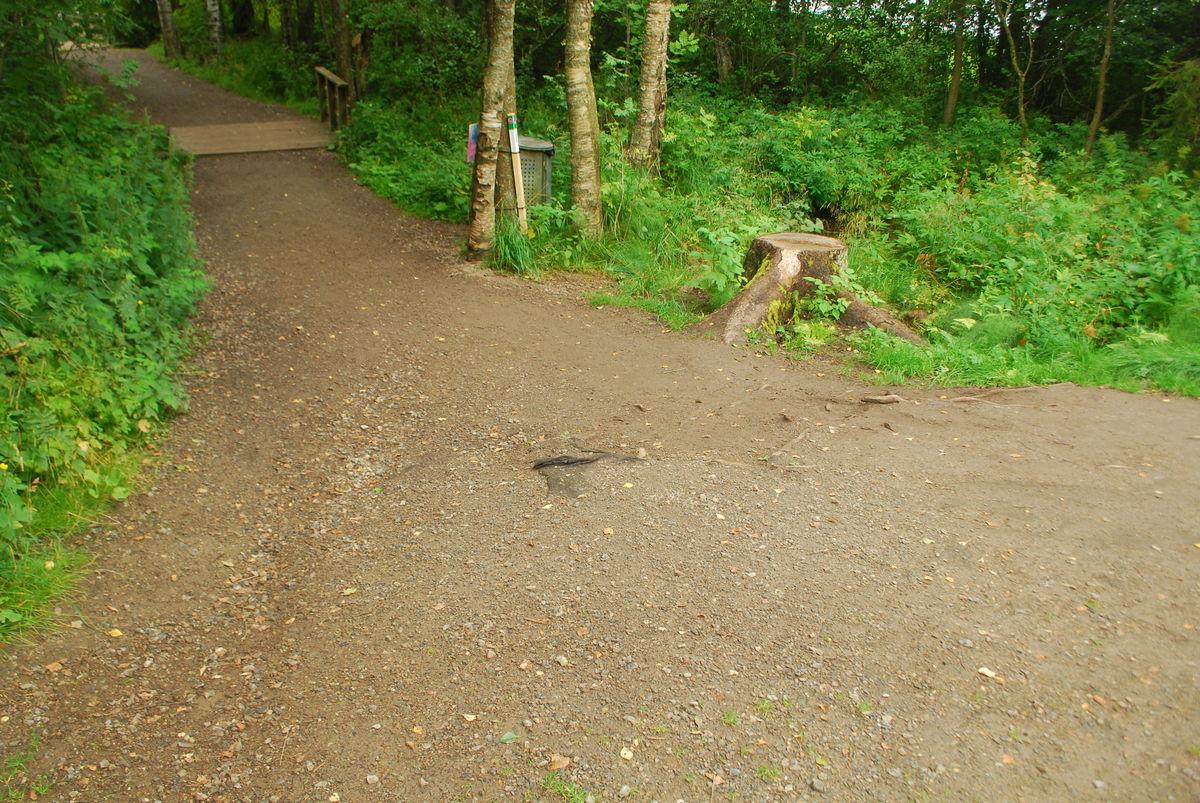 Noe løs grus deler av veien.